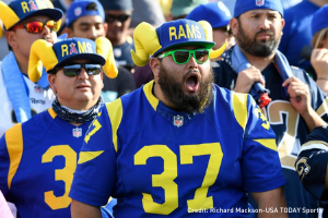 Fans at a sporting event cheering - gifts for football fans