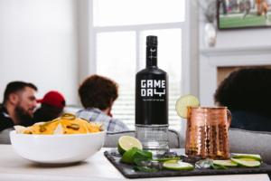 Game Day All American Vodka bottle and Mule Mug - Tampa Super Bowl Drink